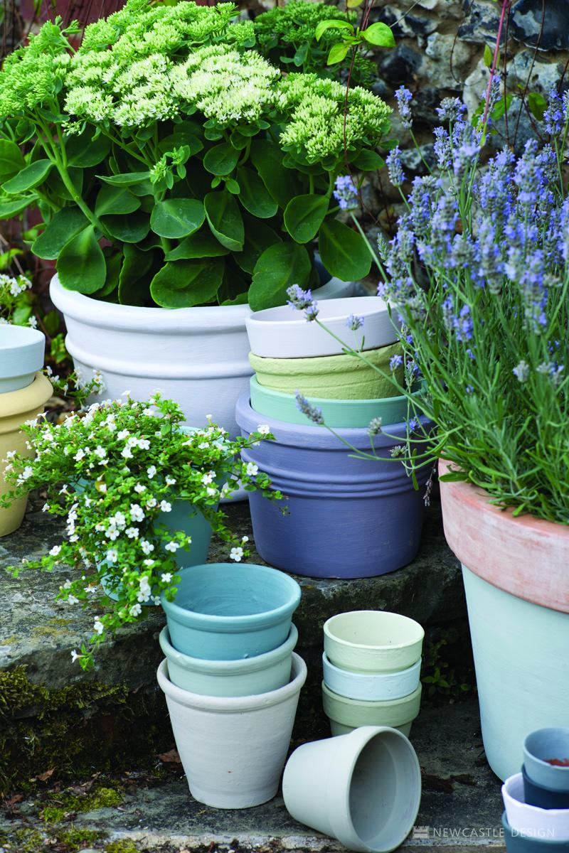 Assorted Painted Pots By Farrow & Ball